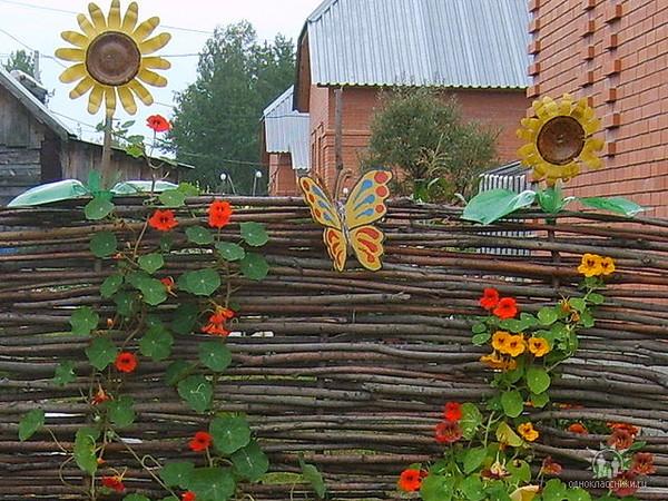 Забор на дачу своими руками из подручных материалов