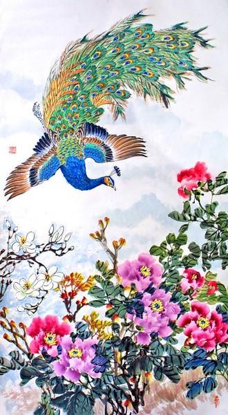 хвостовые перья павлина