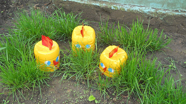 Поделки из бутылок для сада своими руками фото