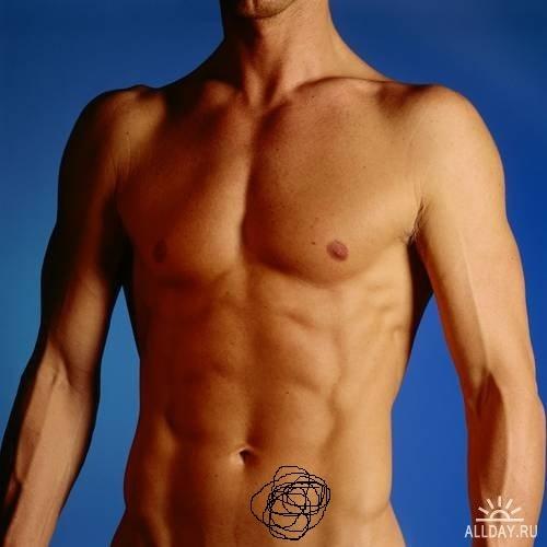 2. Грудь и соски у мужчин. . Целесообразность молочных желез у мужчин и.
