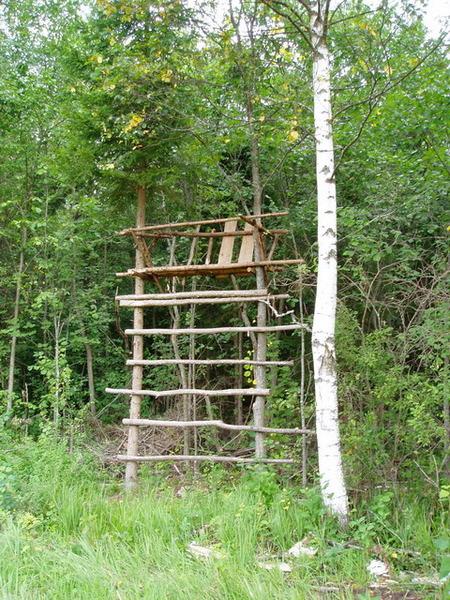 30 Засидка на дереве для охоты