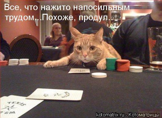 http://content.foto.mail.ru/mail/olejka-80/_blogs/i-1125.jpg