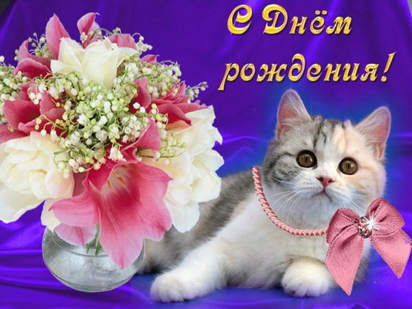 Поздравительные открытки с днем рождения с кошками