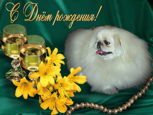 http://content.foto.mail.ru/mail/pani-zosya/33/i-1170.jpg