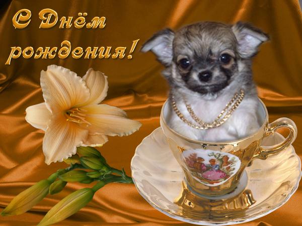 http://content.foto.mail.ru/mail/pani-zosya/33/i-304.jpg