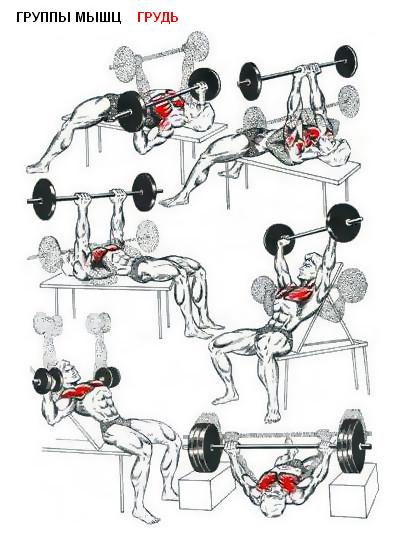 Многих девушек и женщин интересует, как с помощью физических упражнений мож