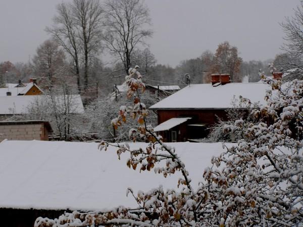Первый снег 2012