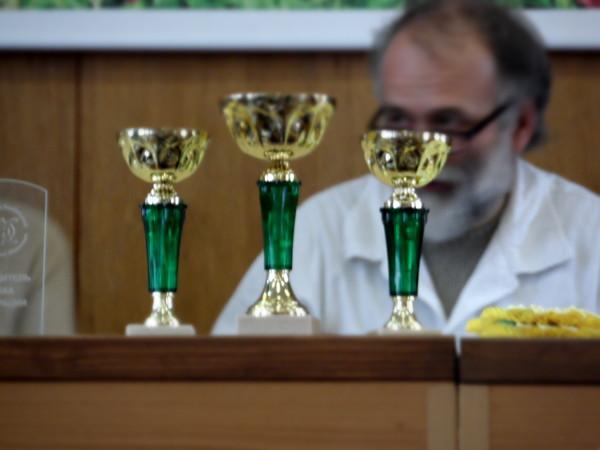 http://content.foto.mail.ru/mail/proksa2/3145/i-3205.jpg