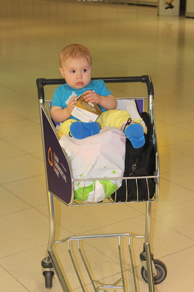 ребёнок в тележке