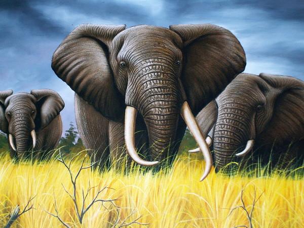 картина - слоны