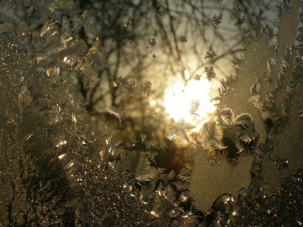 Фото Морозные узоры 2012 Медынь