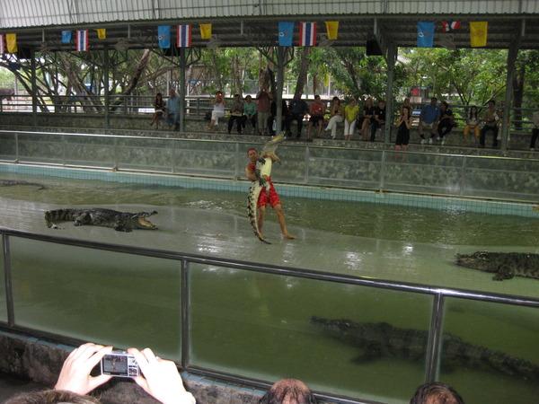 Крокодиловое шоу )))