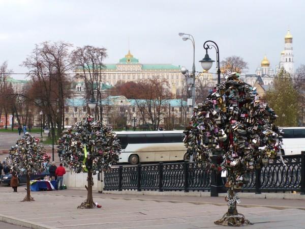 http://content.foto.mail.ru/mail/scherbakova/4564/i-5059.jpg