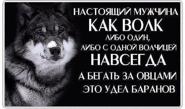 http://content.foto.mail.ru/mail/sergei-rotermel/28/i-126.jpg