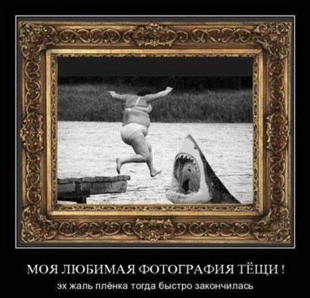 http://content.foto.mail.ru/mail/sergei-rotermel/28/i-137.jpg