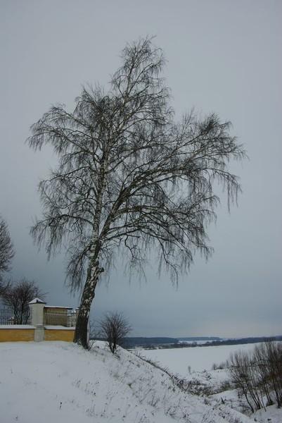 http://content.foto.mail.ru/mail/shel1983/04-05_12_10/i-46740.jpg