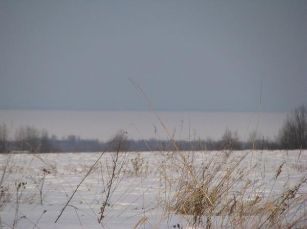 http://content.foto.mail.ru/mail/shel1983/04-14-12-d1/i-56968.jpg