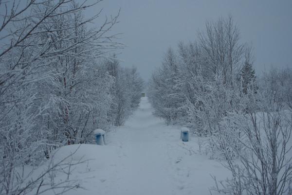 http://content.foto.mail.ru/mail/shel1983/04-14-12-d3/i-57246.jpg