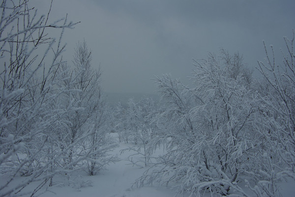 http://content.foto.mail.ru/mail/shel1983/04-14-12-d3/i-57247.jpg