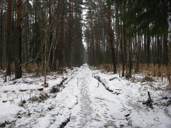http://content.foto.mail.ru/mail/shel1983/04_12_11/i-56576.jpg