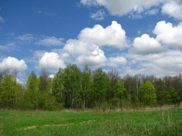 http://content.foto.mail.ru/mail/shel1983/09_05_11/i-52018.jpg
