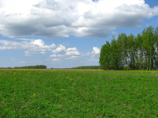 http://content.foto.mail.ru/mail/shel1983/09_05_11/i-52065.jpg