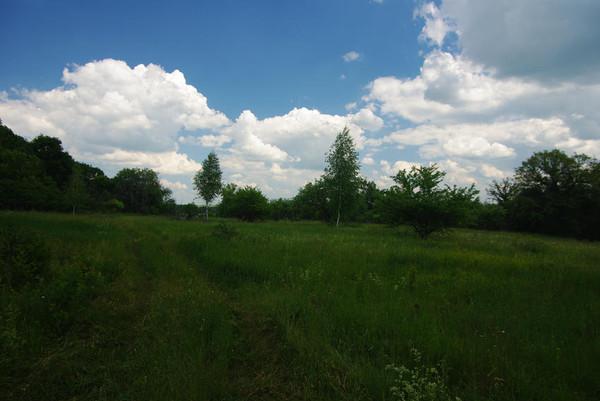 http://content.foto.mail.ru/mail/shel1983/11_06_11/i-52442.jpg