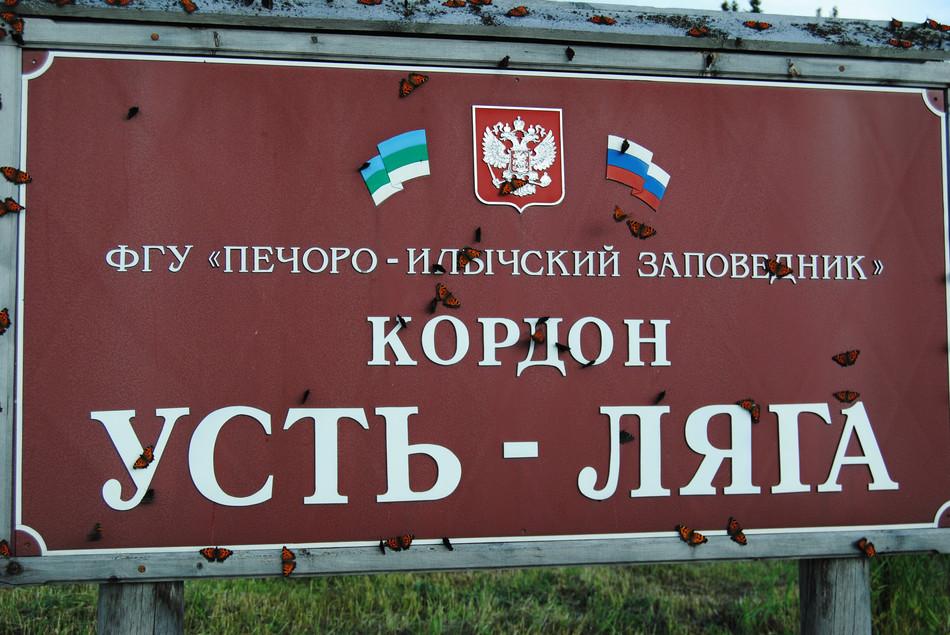http://content.foto.mail.ru/mail/shel1983/13-30_07_13-8/h-65353.jpg