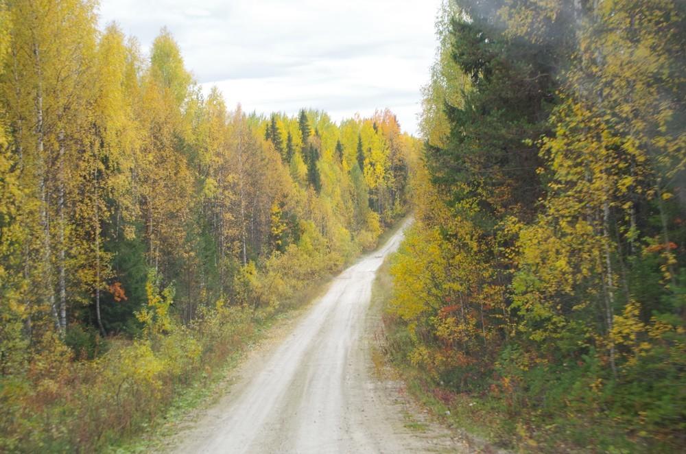 http://content.foto.mail.ru/mail/shel1983/15-30_09_13-d4/h-65887.jpg