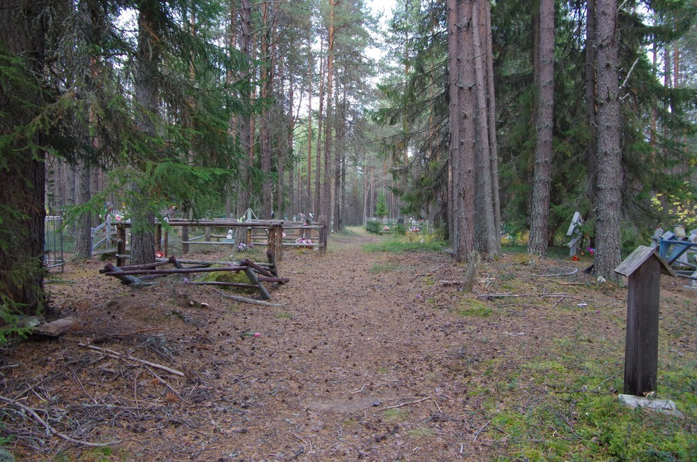 http://content.foto.mail.ru/mail/shel1983/15-30_09_13-d4/h-65957.jpg