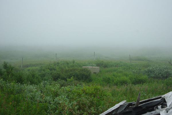 http://content.foto.mail.ru/mail/shel1983/16-31_07_11-d7/i-53777.jpg