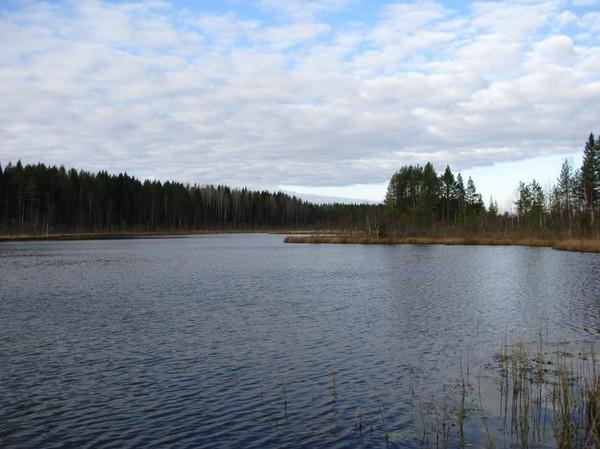 http://content.foto.mail.ru/mail/shel1983/17-30_10_10/i-43830.jpg