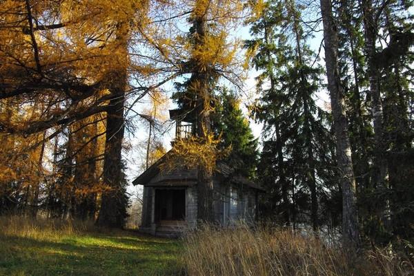 http://content.foto.mail.ru/mail/shel1983/17-30_10_10/i-46107.jpg