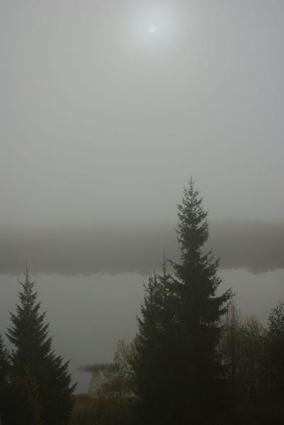 http://content.foto.mail.ru/mail/shel1983/18_09-02_10-11-11/i-56183.jpg