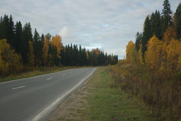 http://content.foto.mail.ru/mail/shel1983/18_09-02_10-11-11/i-56184.jpg