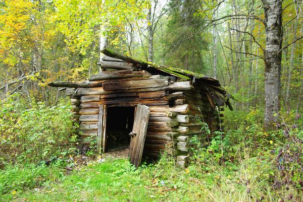 http://content.foto.mail.ru/mail/shel1983/18_09-02_10-11-4/i-55151.jpg