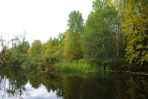 http://content.foto.mail.ru/mail/shel1983/18_09-02_10-11-4/i-55166.jpg