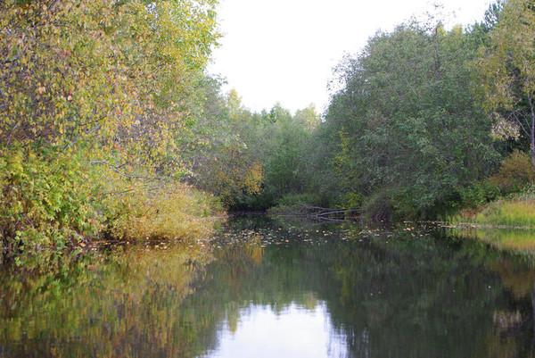 http://content.foto.mail.ru/mail/shel1983/18_09-02_10-11-4/i-55173.jpg