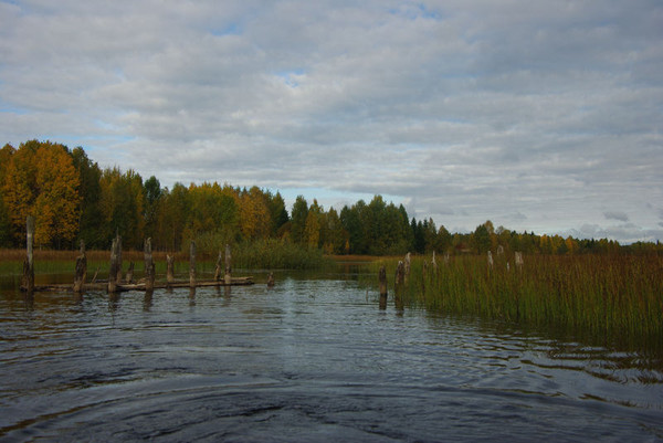 http://content.foto.mail.ru/mail/shel1983/18_09-02_10-11-4/i-55185.jpg
