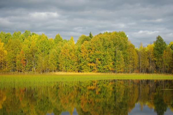 http://content.foto.mail.ru/mail/shel1983/18_09-02_10-11-4/i-55301.jpg
