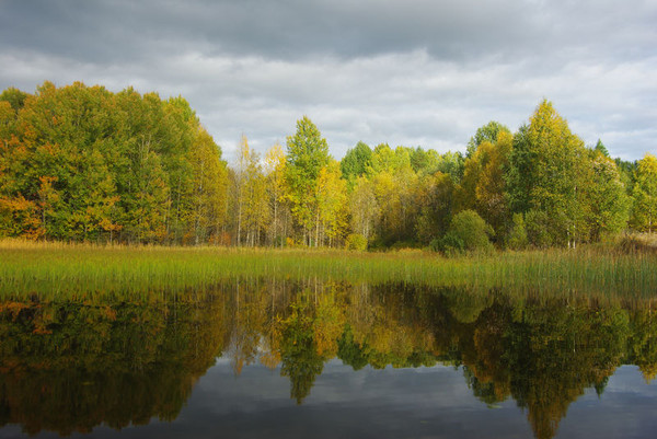 http://content.foto.mail.ru/mail/shel1983/18_09-02_10-11-4/i-55304.jpg