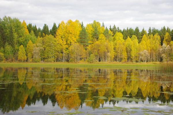 http://content.foto.mail.ru/mail/shel1983/18_09-02_10-11-4/i-55312.jpg