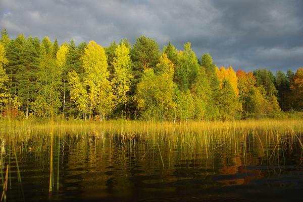 http://content.foto.mail.ru/mail/shel1983/18_09-02_10-11-4/i-55326.jpg