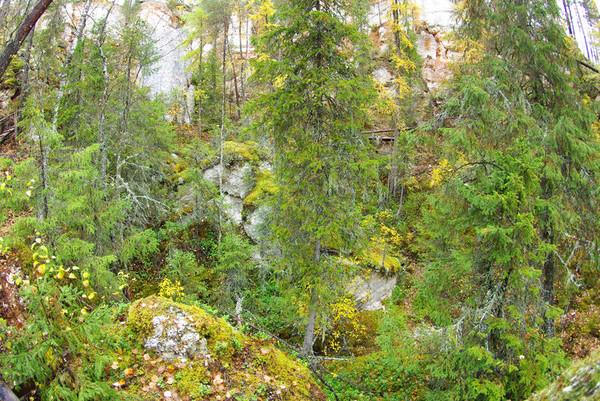http://content.foto.mail.ru/mail/shel1983/18_09-02_10-11-9/i-55752.jpg