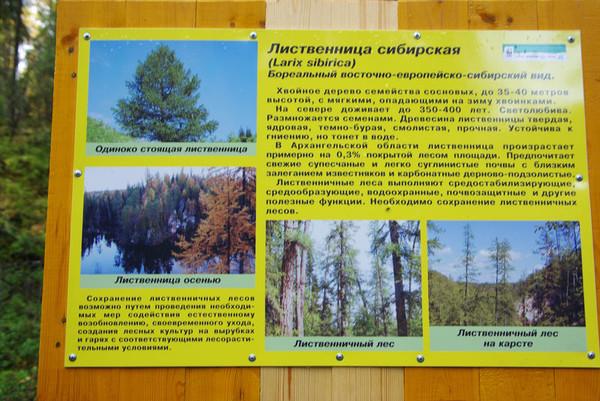 http://content.foto.mail.ru/mail/shel1983/18_09-02_10-11-9/i-55839.jpg