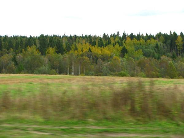 http://content.foto.mail.ru/mail/shel1983/18_09-02_10-11/i-54549.jpg