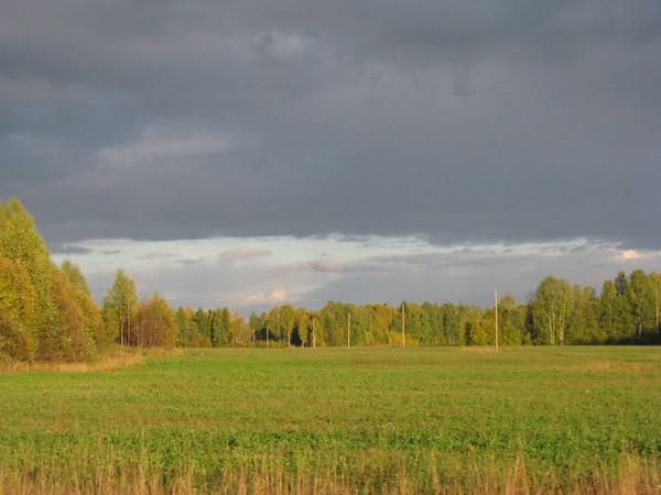 http://content.foto.mail.ru/mail/shel1983/18_09-02_10-11/i-54597.jpg