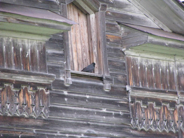http://content.foto.mail.ru/mail/shel1983/18_09-02_10-11/i-54600.jpg