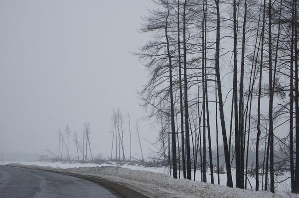 http://content.foto.mail.ru/mail/shel1983/25_03_12/i-58764.jpg