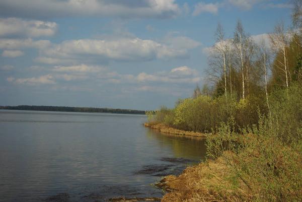 http://content.foto.mail.ru/mail/shel1983/30_04-02_05_11/i-51729.jpg